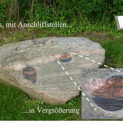 """Gneis mit Anschliff © Verein """"Wir für Darnewitz"""" e.V."""