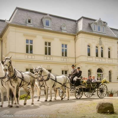 Schloss Pferde